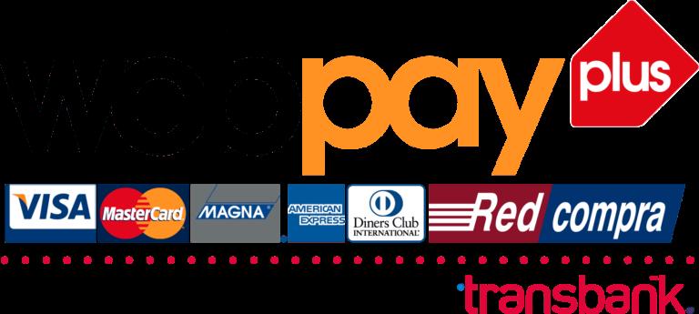 webpay large 768x345 - Pago de servicios