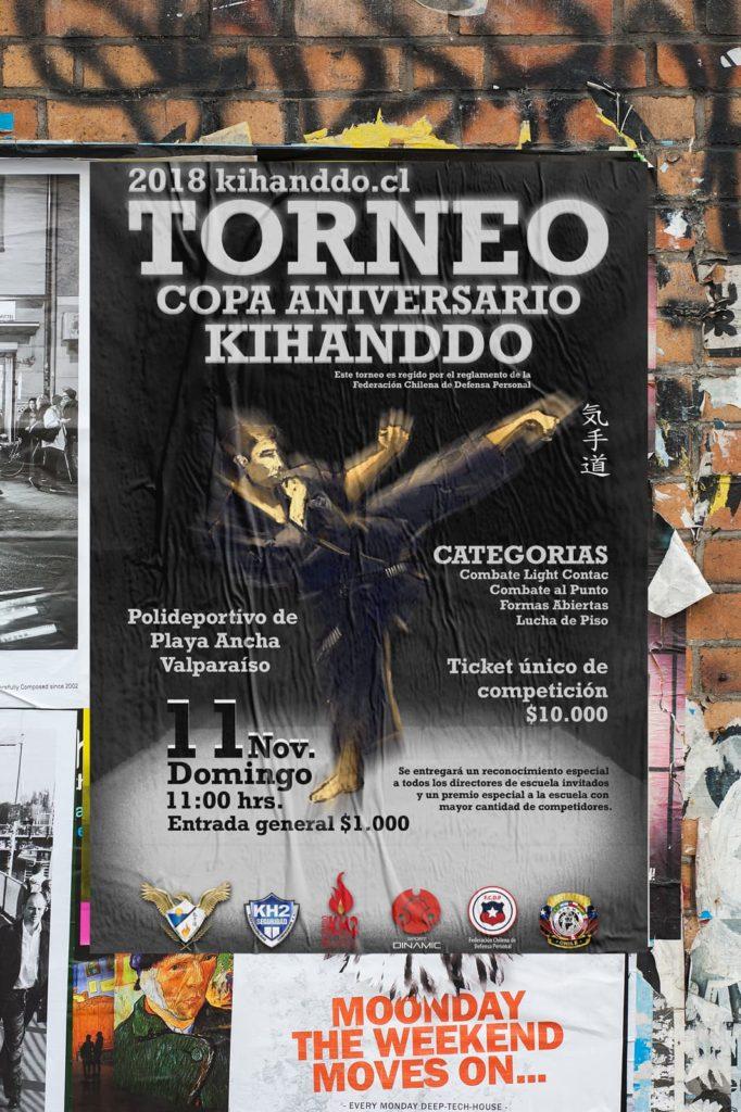 afiche torneo kihanddo 682x1024 - Afiches carteles diversos
