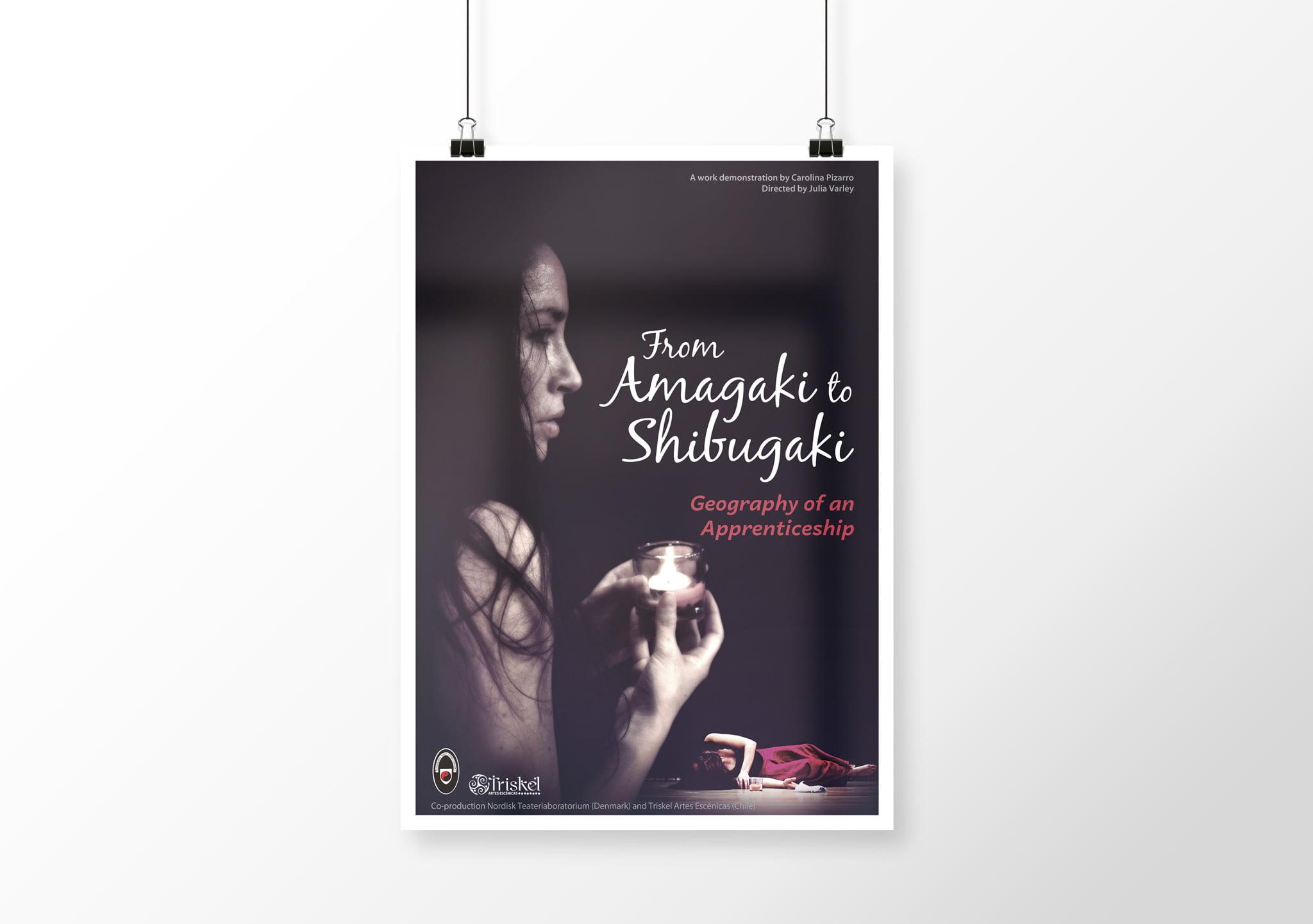 afiche carolina pizarro - Portafolio