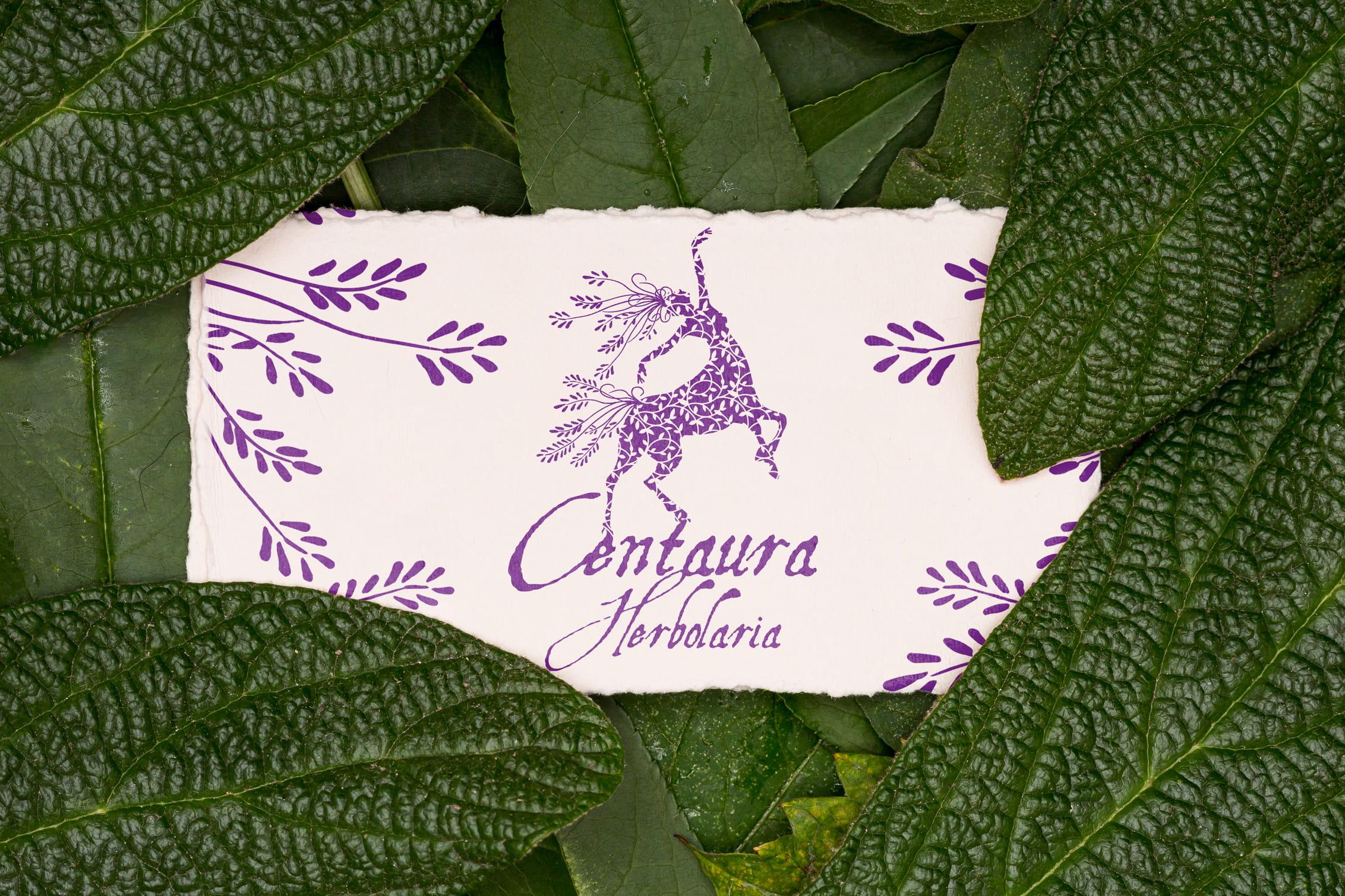 papel y hojas centaura herbolaria - Portafolio